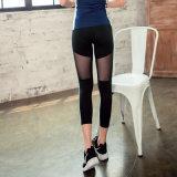 Le yoga de femmes de sports halète les guêtres respirables en gros fonctionnant fortement