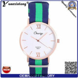 Yxl-487 다니엘 작풍 색깔 Quartz Sport Watches 나일론 결박 제네바 손목 시계 우아 사업가 숙녀