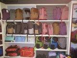 De populaire Schooltas van de Rugzak van de Vrije tijd van Sneeuwvlokken voor Openlucht