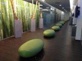 Pavimentazione dell'interno del vinile di scatto WPC del vinile delle mattonelle di pavimento del PVC delle mattonelle di pavimento del vinile