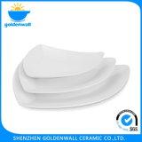 Personalizzare il piatto di ceramica dello spuntino del servizio del ristorante