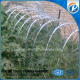 Looped Razor Wire for Chain Mesh
