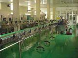 Grande fabricante da máquina da planta do suco da manga em China