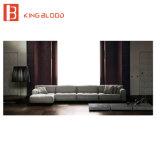 2015 disegni stabiliti del sofà alla moda nuovi con le immagini