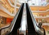 Escada rolante de tipo pesado para tráfego público