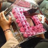 Acryl nam Plastic van de douane Doos met Deksel toe