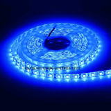 14.4W 60LEDs/M SMD5050 RGB LED 지구