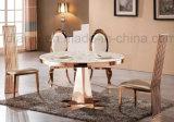 Tabella pranzante del metallo della mobilia della sala da pranzo (A066#)