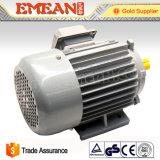 Motore elettrico 220V di induzione a tre fasi di serie di Y