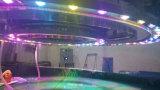 다채로운 LED 가벼운 실내 옥외 물 커튼을%s 가진 특별한 디자인 장식적인 정원