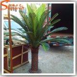 El traje plástico artificial de la palmera sale de los crisoles de la palmera