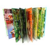 Atascamiento de tarjeta colorido de los niños del cartón, impresión del libro de Hardcover