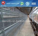 Equipo de acero de las aves de corral de la jaula del pollo del pájaro