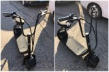 Elektrisches Motorrad mit 350W 48V/10ah