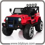 Nuovo giro sull'automobile - Bjs2388