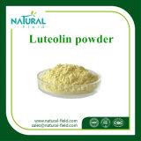 ルテオリンの粉98%の製造業者CAS: 491-70-3プラントエキス