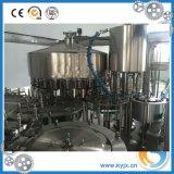 Pequeña cadena de producción del agua de la bebida de la botella