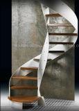 Personalizzare la scala d'acciaio della scala a spirale con la scala dell'inferriata dell'acciaio inossidabile