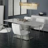 Tabela de jantar da neve nova da forma e sofá brancos da cadeira (NK-DT265-1)