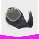 100% rohes unverarbeitetes brasilianisches gerades Haar mit Schliessen