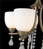 Illuminazione europea di Penant del ferro, lampada con vetro (D-8146/3)