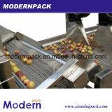 De Spoelende Machine van de Groente van het Fruit van de Branding van de hoge Efficiency