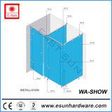Partition en verre populaire de salle de toilette de l'acier inoxydable 2016 (WS-SHOW)
