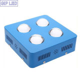Nuovo Present Hydroponics Growing System 504W 600W LED Grow Light