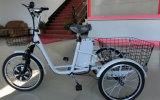 Pedal (TC-017N)の350With500W Brushless Hub Motor Electric Tricycle