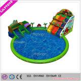 Grote Verkoop! Park van het Water van het Vermaak van het thema het Opblaasbare voor Jonge geitjes