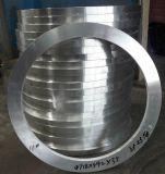 De grote Smeedstuk Gesmede Ring van het Roestvrij staal