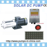 Solar Water Pump, Solar Pump, Solar Powered Water Pump