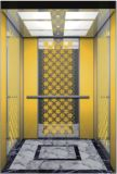 Geëtstek M. & Mrl Aksen hl-x-006 van de Lift van de Lift van de passagier Spiegel