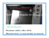 Vollautomatische faltende und stempelschneidene Maschine mit dem Entfernen