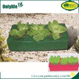 Les ventes chaudes d'Onlylife ont personnalisé des légumes de rectangle et les fruits élèvent le sac