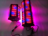 O diodo emissor de luz de Epistar cresce 300W claro 360 graus para a estufa