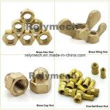 Noot Nut/Coupling Nut/Rivet van de Hexuitdraai Nut/Cage van het roestvrij staal/van de Koolstof de Steel/Zinc Geplateerde Vernikkelde/de Noot Nut/Tee Nut/Wing Nut/Slotted van GLB Nut/Square