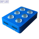 8バンドIndoor Plants 800W COB Hydroponics LED Grow Light