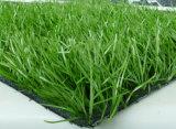 人工的な屋外のカーペット、フットボールの草
