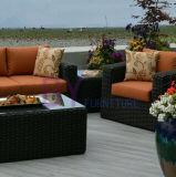 屋内および屋外のテラスのPEの藤の余暇のソファーセット