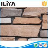 煉瓦展示品の擁壁のブロックの芸術