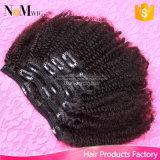 페루 머리 사람의 모발 묶은 머리 형식 머리 부속품 (Qb cli ST)