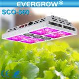 O diodo emissor de luz da planta da microplaqueta 300W do CREE cresce a luz