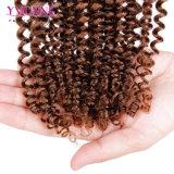 方法2音色のOmbreのブラジルの人間の毛髪の織り方
