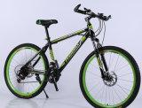 중국 (ly 64)에서 싼 탄소 산 자전거 공급자