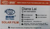 Purple van de Film van de Tint van het Venster van de Film van het Kameleon van de Verkoop van de fabriek direct Auto