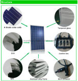 per comitato solare solare di uso 250W del sistema il poli