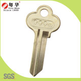 Heißes Sale Coustomized Brass Door Key Blank für Locks