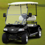 태양 전지판 전기 골프 차 또는 손수레 또는 2 륜 마차 2-Seater