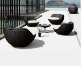 DIY im Freienmöbel-faltende Klappstuhl-runde Ei-Vertrags-Garten-Kugel-Möbel